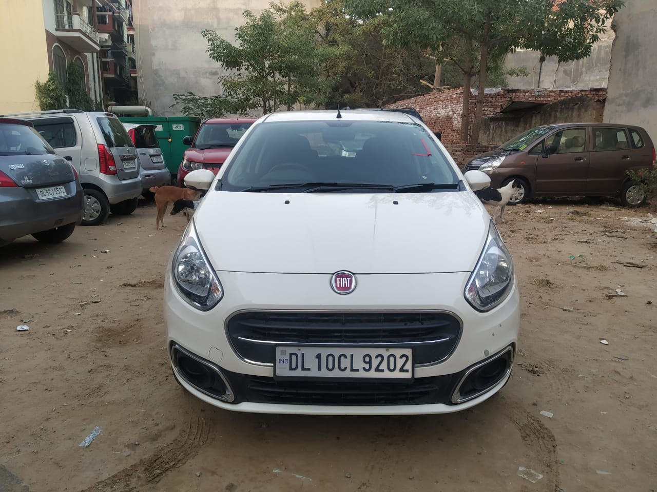 2016 Used Fiat Punto Evo DYNAMIC 1.2